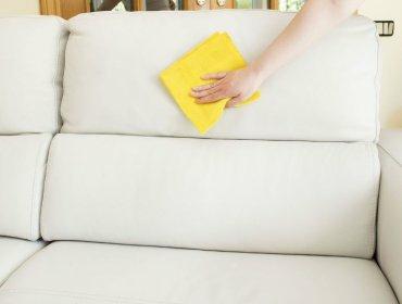 Как почистить диван из ткани от пятен и грязи в домашних 1