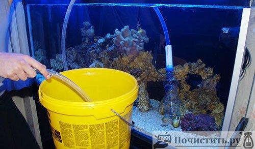Как почистить дно аквариума фото