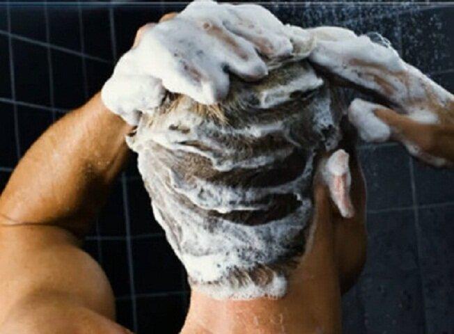 Народные методы борьбы с бельевыми вшами