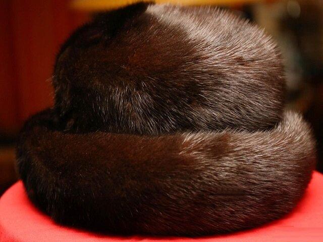 Правильное хранение норковых шапок